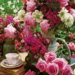 Весняні троянди