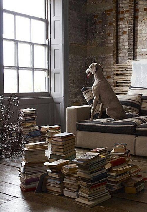 Книжки і собака